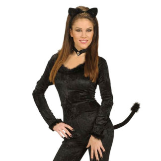 Set gattina