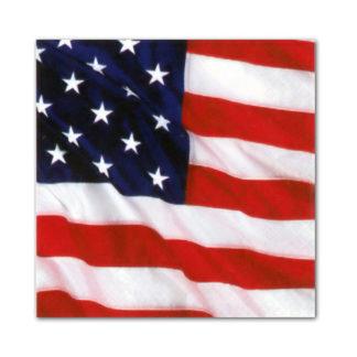 Tovaglioli America / USA Conf 16 pezzi
