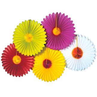 Rosone margherita colorata cm. 50/55