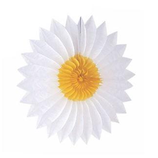 Rosone margherita bianca cm. 50/55