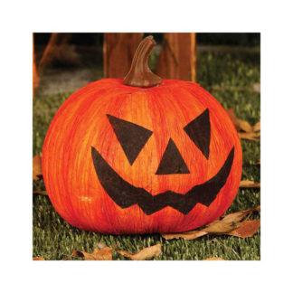 Zucca di Halloween decorativa cm 20
