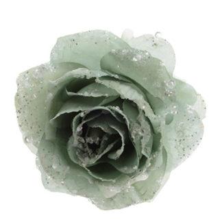 Rosa glitterata Eucalyptus con clip