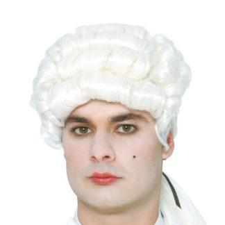 Parrucca bianca d'epoca uomo