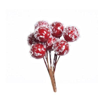 Set 8 pick da 8 bacche rosse ghiacciate