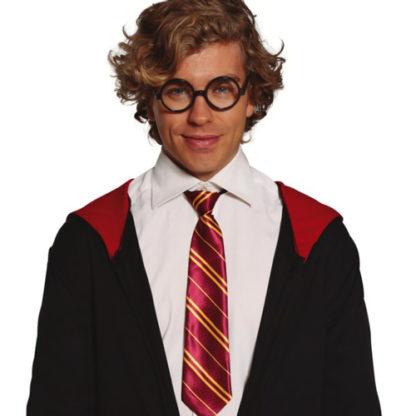 Cravatta stile Harry Potter